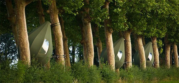 tree tents hertshoorn campsite for rent