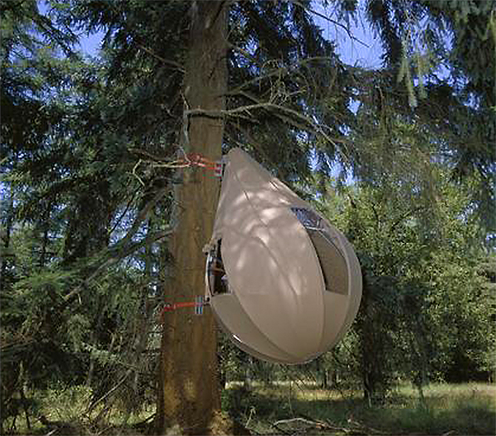 treetent 2005 edition