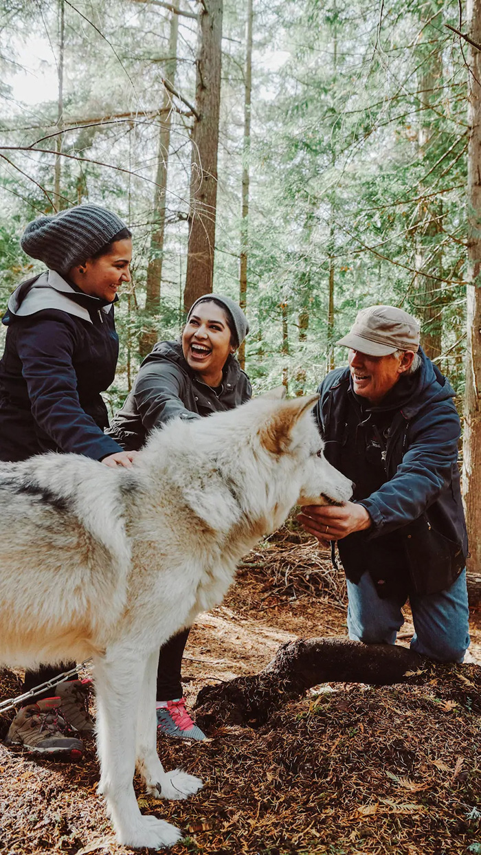 visitors enjoying wolves sanctuary