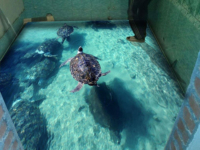 3d epoxy floors realistic sea turtle