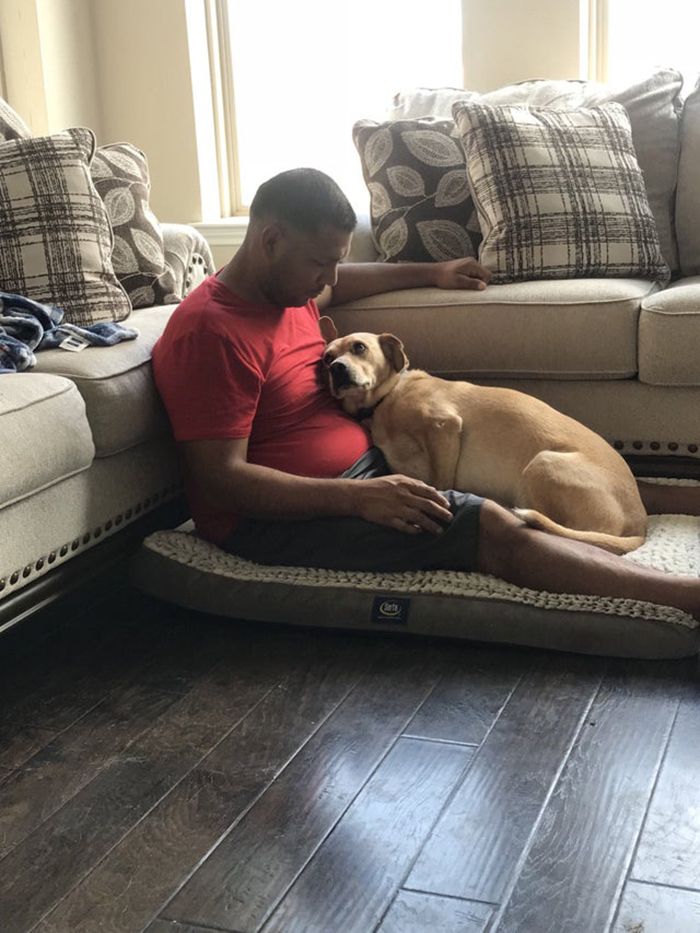 Dog Lying on Mattress with Owner Pet Adoption Photo