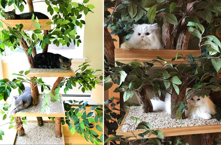 Indoor pet treehouses