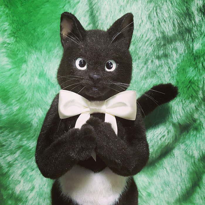 Lifelike Black Cat Plush Toy with White Ribbon Collar