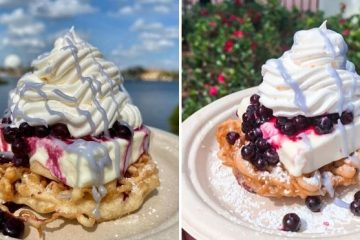 Mini Blueberry Funnel Cake