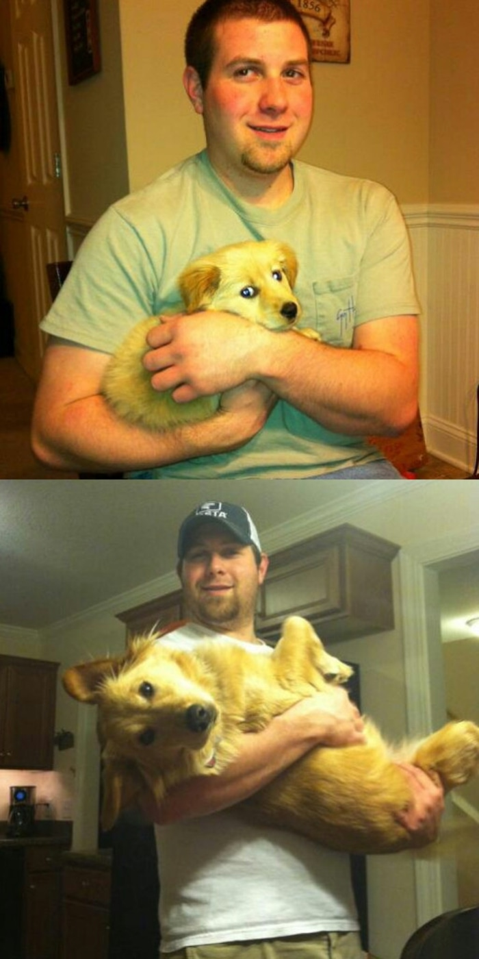 Owner and Puppy Growth Comparison 1 Year Later