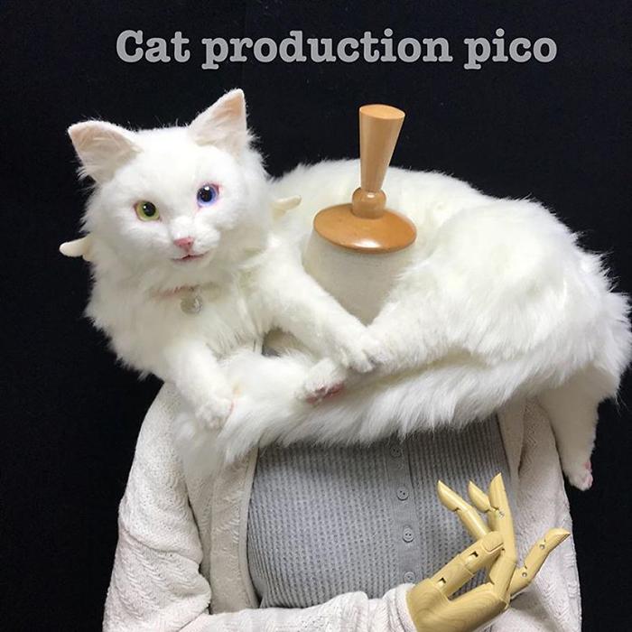 Realistic Kitty Plush Toy with Heterochromia