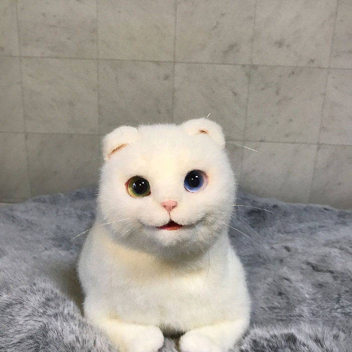 Realistic Kitty Plush Toy with Odd Eyes