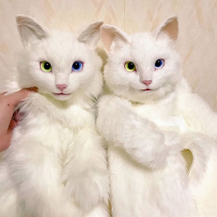 Realistic Kitty Plushies with Heterochromia
