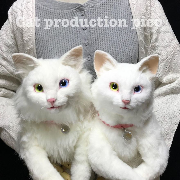 Realistic Kitty Plushies with Odd Eyes