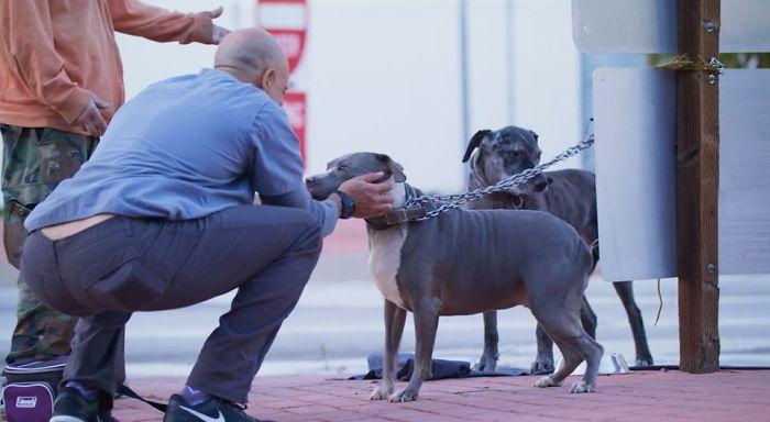 Street Veterinarian Dr. Kwane Stewart Petting a Dog