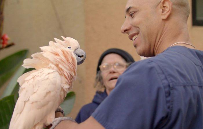 Street Veterinarian Dr. Kwane Stewart Petting a Parrot