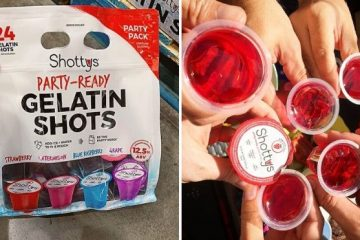Vodka Jell-O Shots