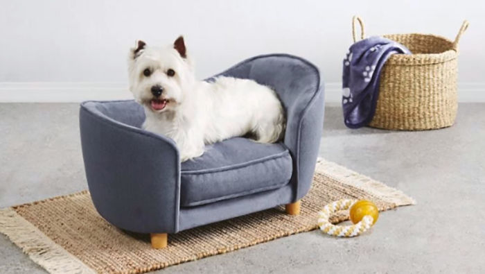 aldi pampered pets special buy mini furniture for dogs