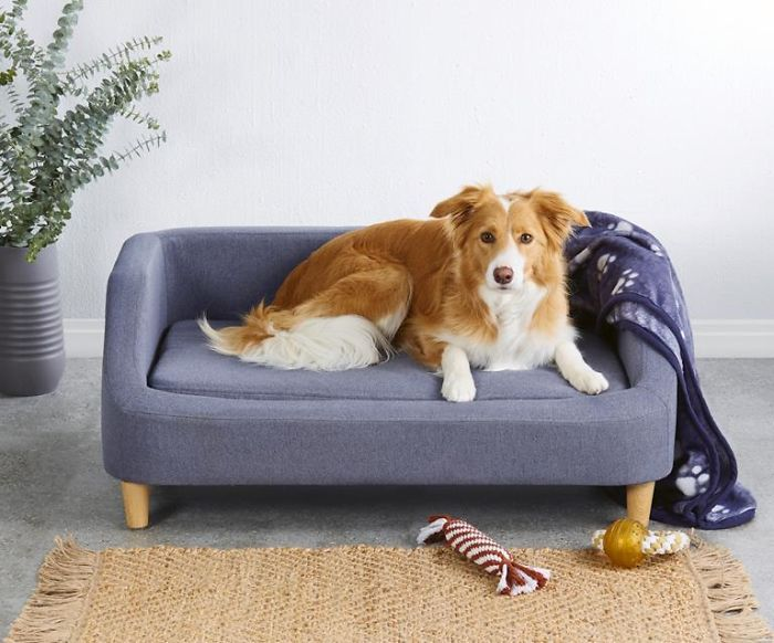 Dog A Tiny Sofa From Aldi