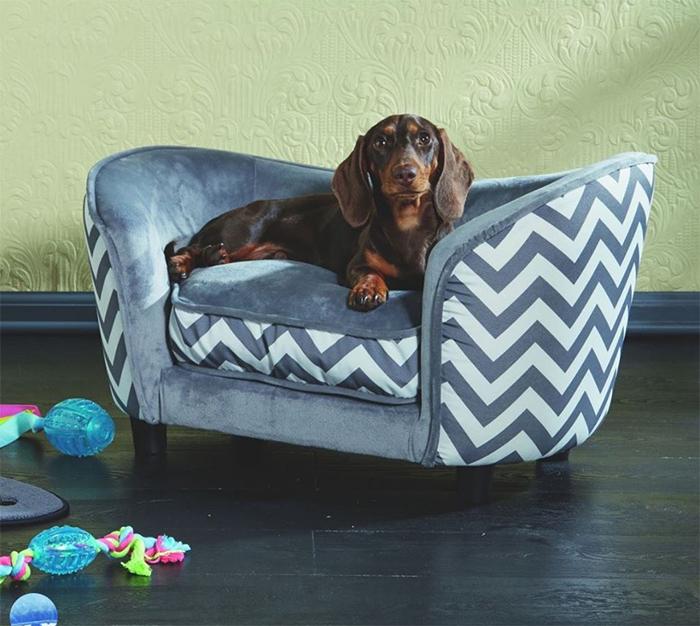aldi tiny sofas for dogs