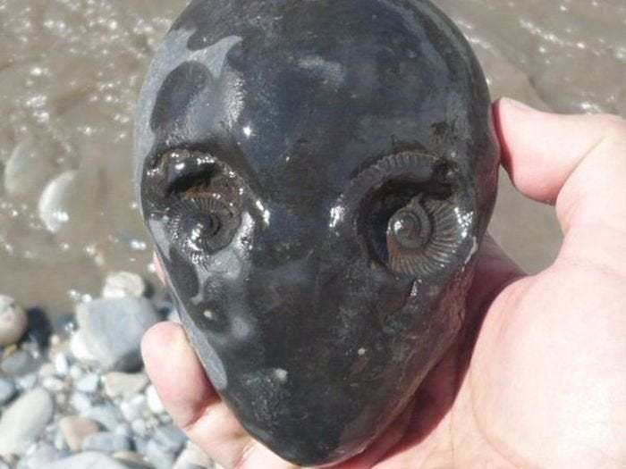 alien stone from river