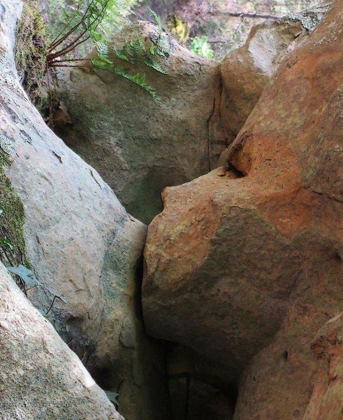 breastfeeding rocks pareidolia