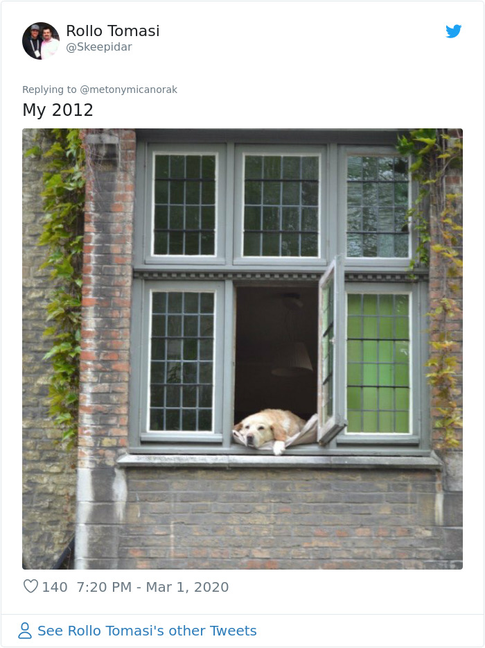 bruges famous dog photo may 2012