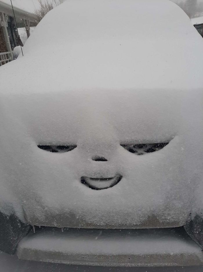 car is satisfied with getting covered in snow