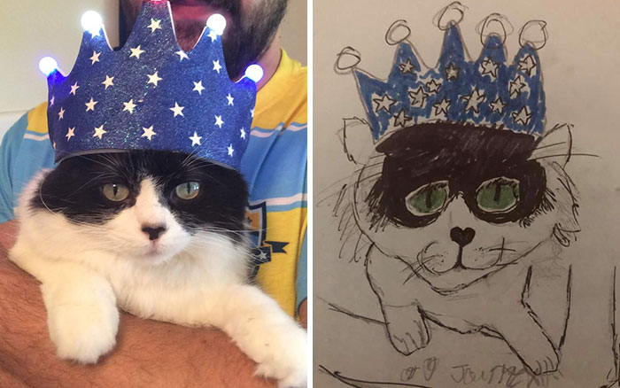 cat with a blue star-sprinkled crown