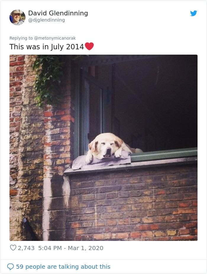 fidel bruges photo july 2014