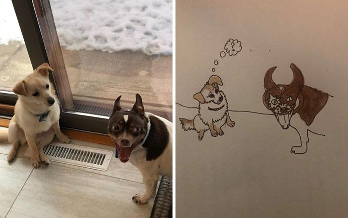 funny bad pet drawings