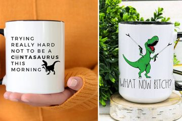 funny t-rex Mugs