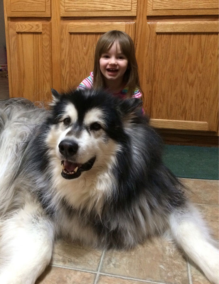girl with giant fluffy puppy