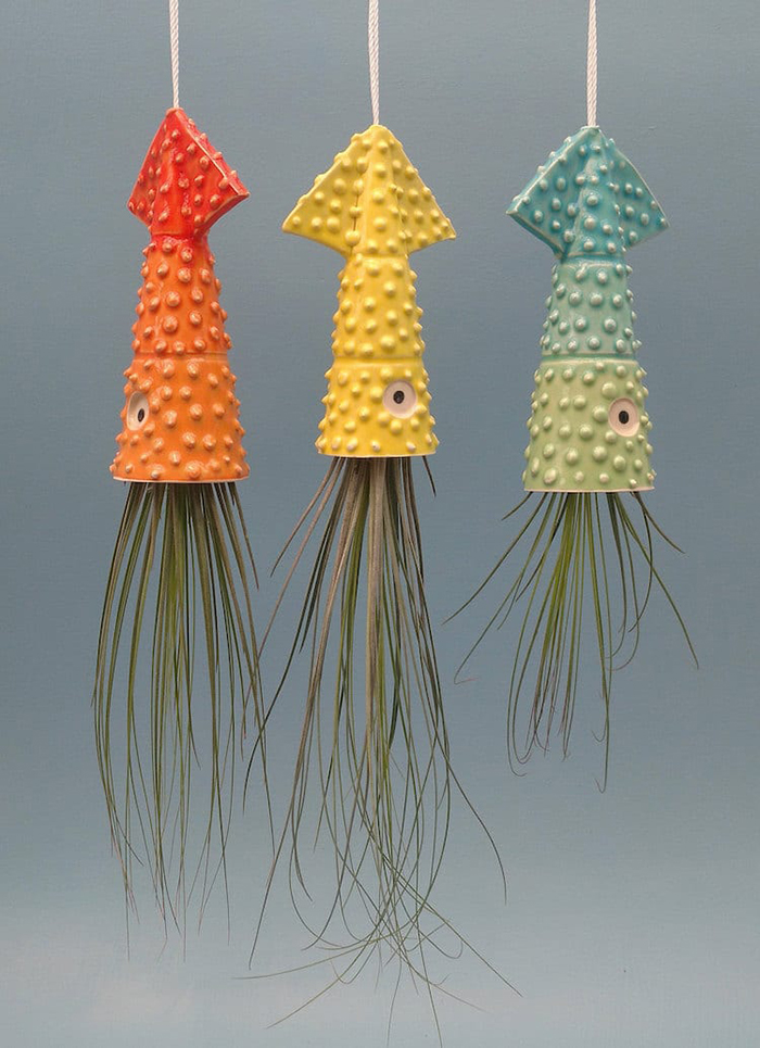 gradient squid planters