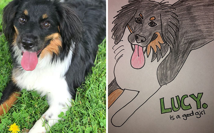 happy dog portrait for WHS bad pet drawing campaign