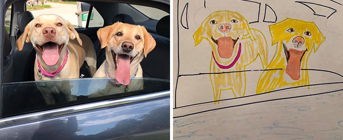 happy labs drawing
