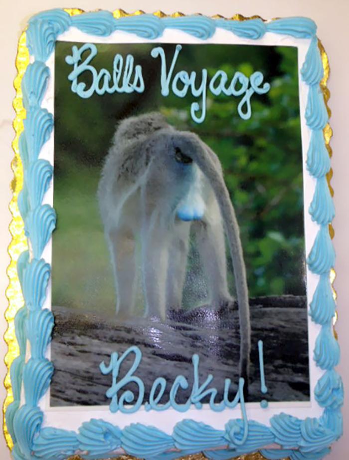 hilarious farewell cakes balls voyage