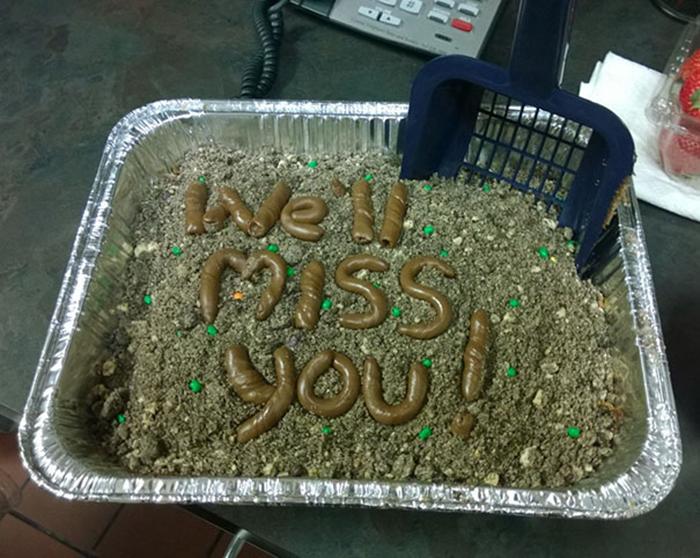 hilarious farewell cakes litter box