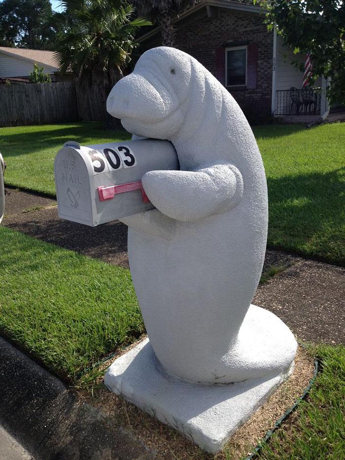 manatee mailbox