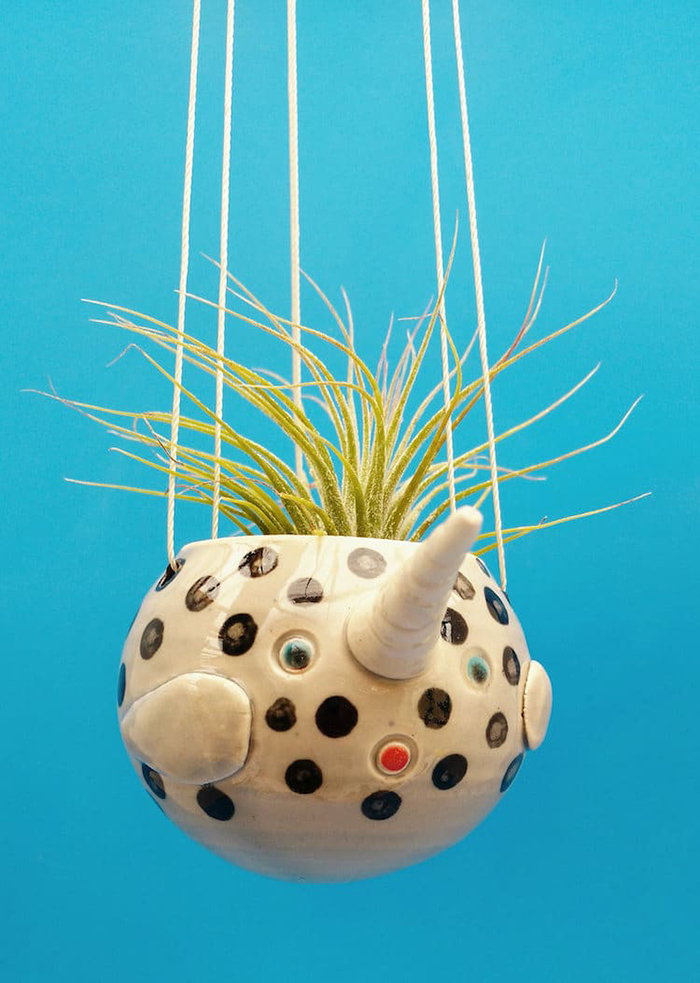 narwhal plant pot