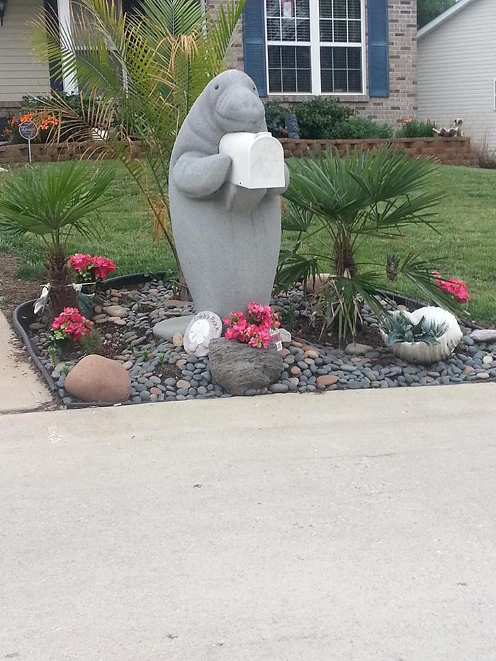 neighbor's manatee mailbox