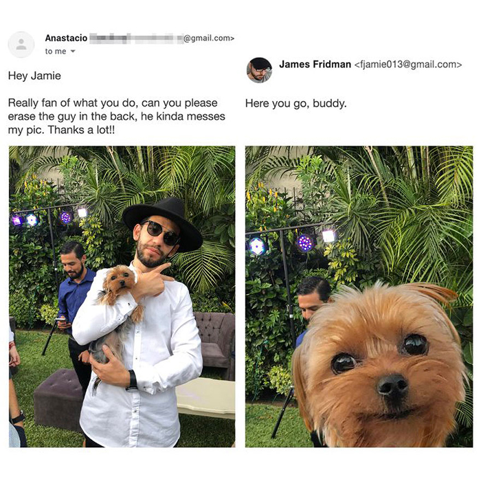 photoshop troll gives dog attention it deserves