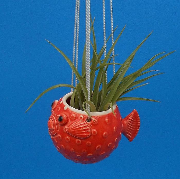 red pufferfish planter