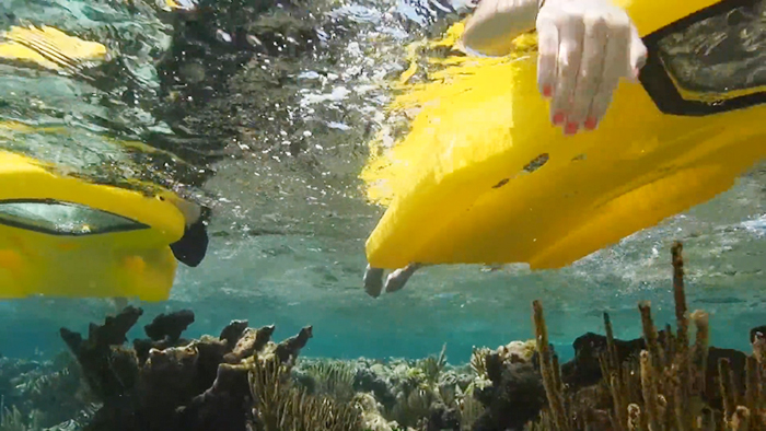 reefboard snorkel alternative