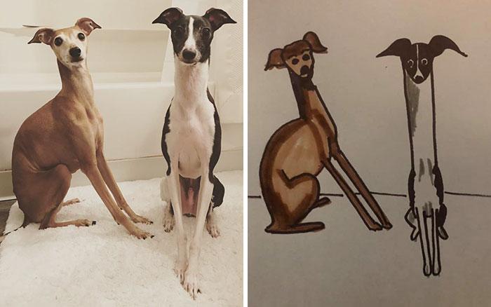 rookie and moe bad pet drawings
