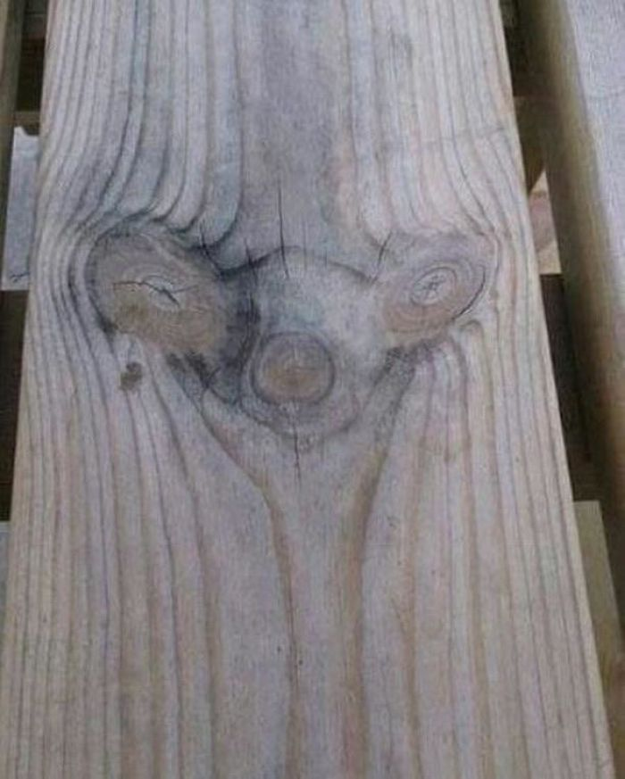 sid from ice age in wood