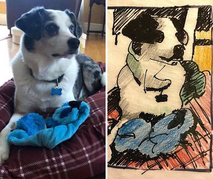 some of the bad pet drawings are actually really good