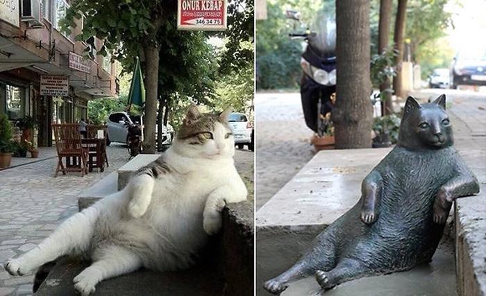 tombili bronze statue istanbul