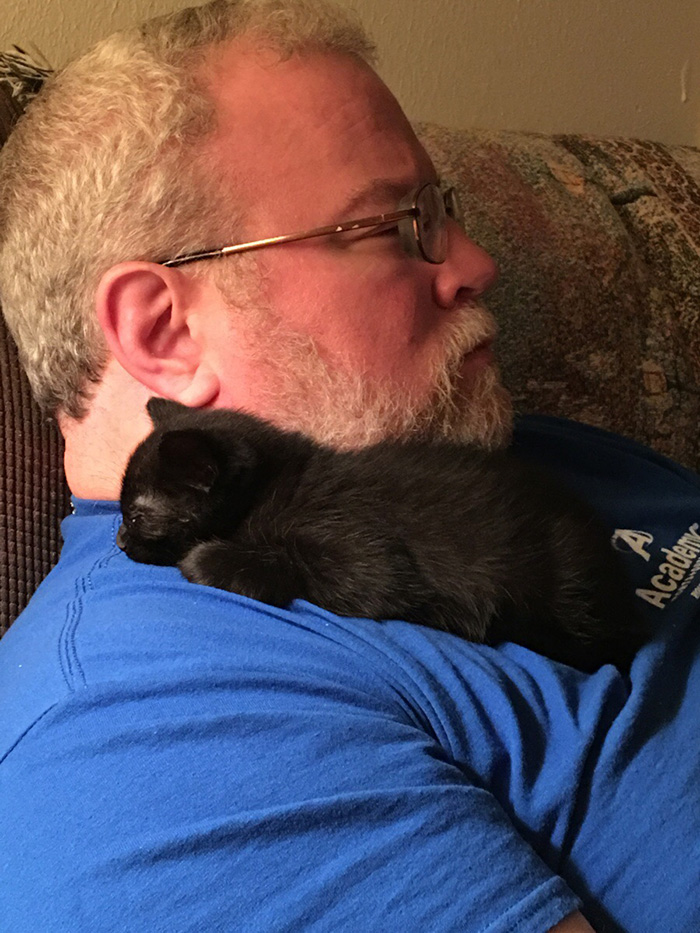 Kitten Sleeping on Man's Shoulder