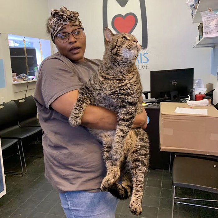 Lady Carrying Chonky Cat Named Mr. B