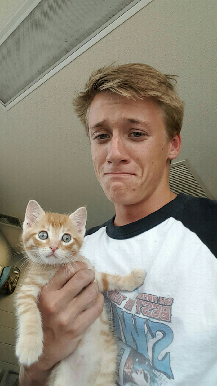 Man Holding a Kitten and Making a Sad Face
