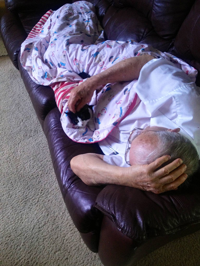 Old Man Petting Kitten while Lying on Couch