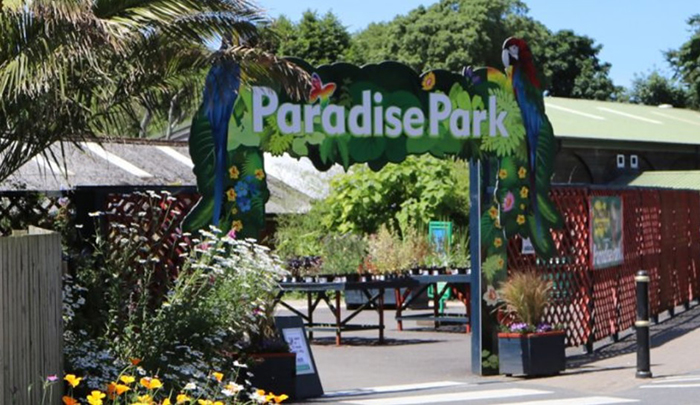Paradise Park where Zookeepers Self-isolate