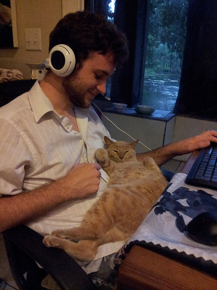 People Who Didn't Want Cats Boyfriend Playing with Cat while Working