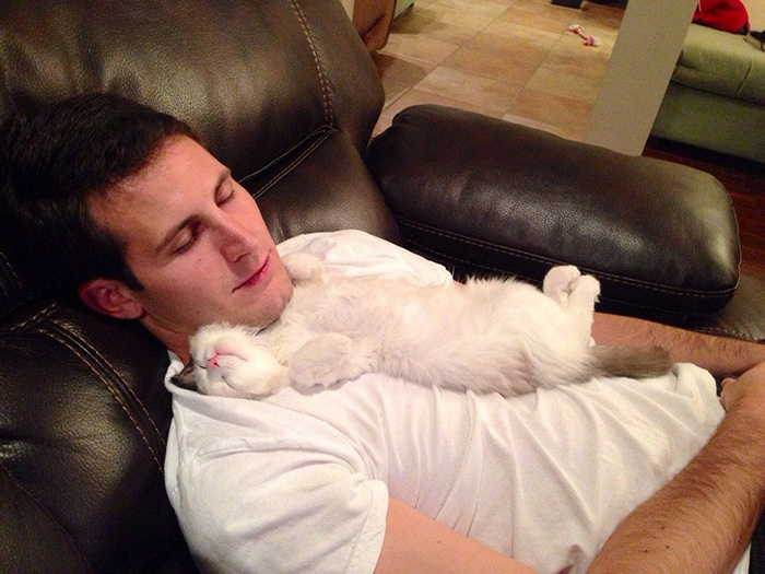 People Who Didn't Want Cats Boyfriend Sleeping with Cat on Couch